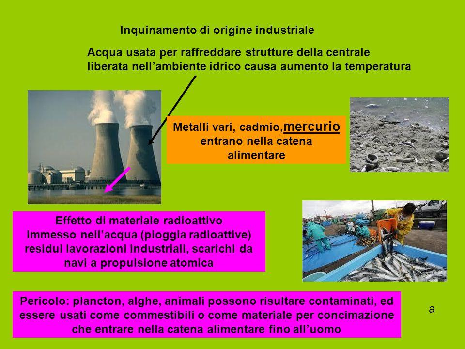 Inquinamento di origine industriale Acqua usata per raffreddare strutture della centrale liberata nell'ambiente idrico causa aumento la temperatura Ef