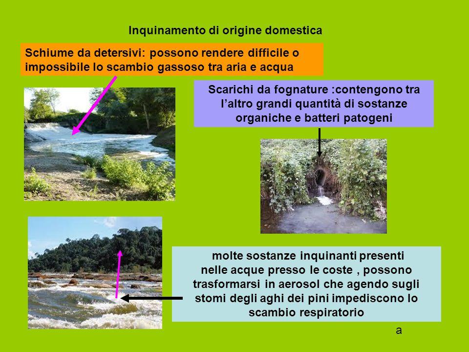 Inquinamento di origine domestica Scarichi da fognature :contengono tra l'altro grandi quantità di sostanze organiche e batteri patogeni Schiume da de