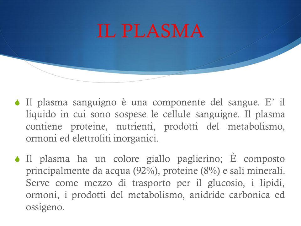 IL PLASMA  Il plasma sanguigno è una componente del sangue. E' il liquido in cui sono sospese le cellule sanguigne. Il plasma contiene proteine, nutr