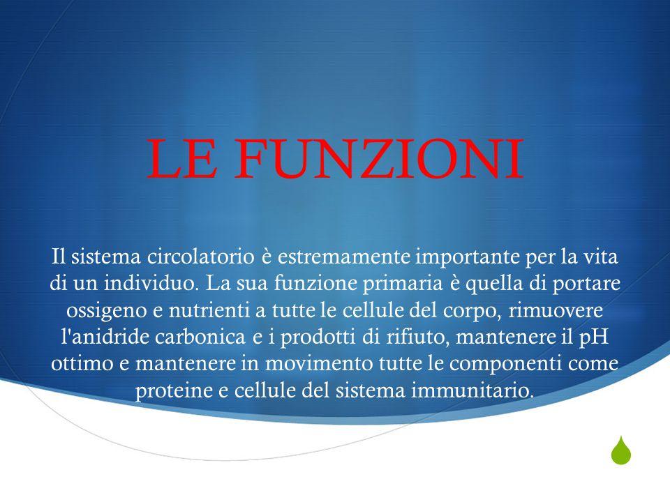  LE FUNZIONI Il sistema circolatorio è estremamente importante per la vita di un individuo. La sua funzione primaria è quella di portare ossigeno e n