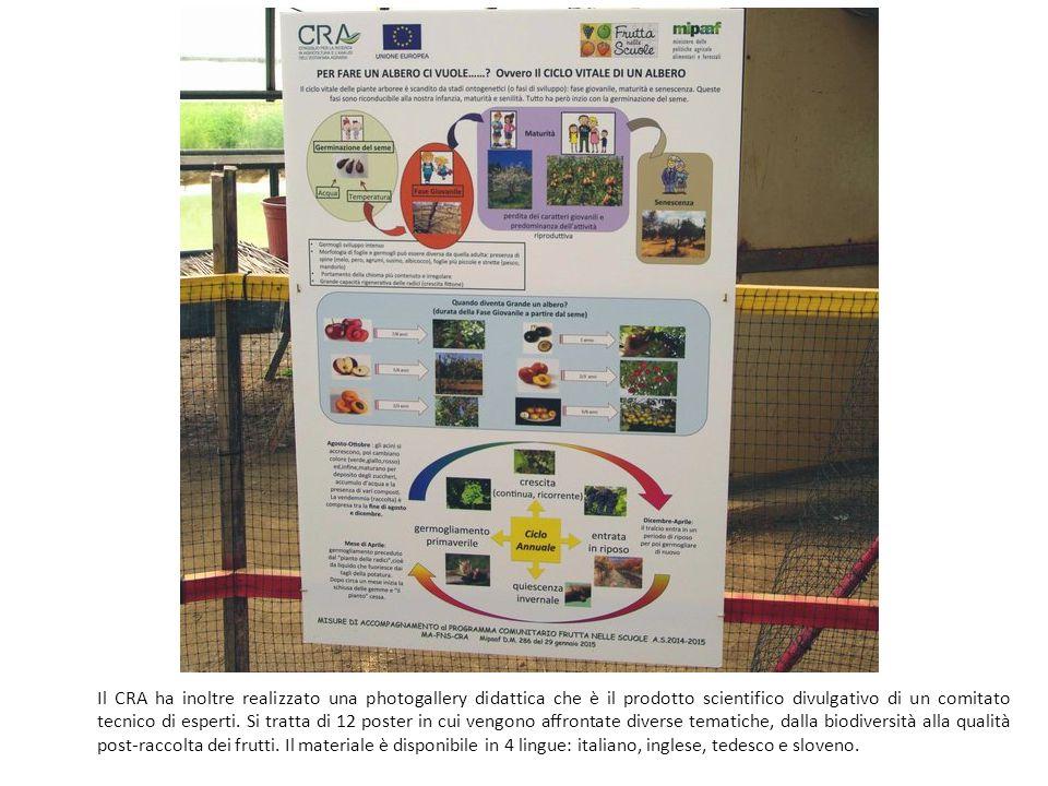 Il CRA ha inoltre realizzato una photogallery didattica che è il prodotto scientifico divulgativo di un comitato tecnico di esperti.
