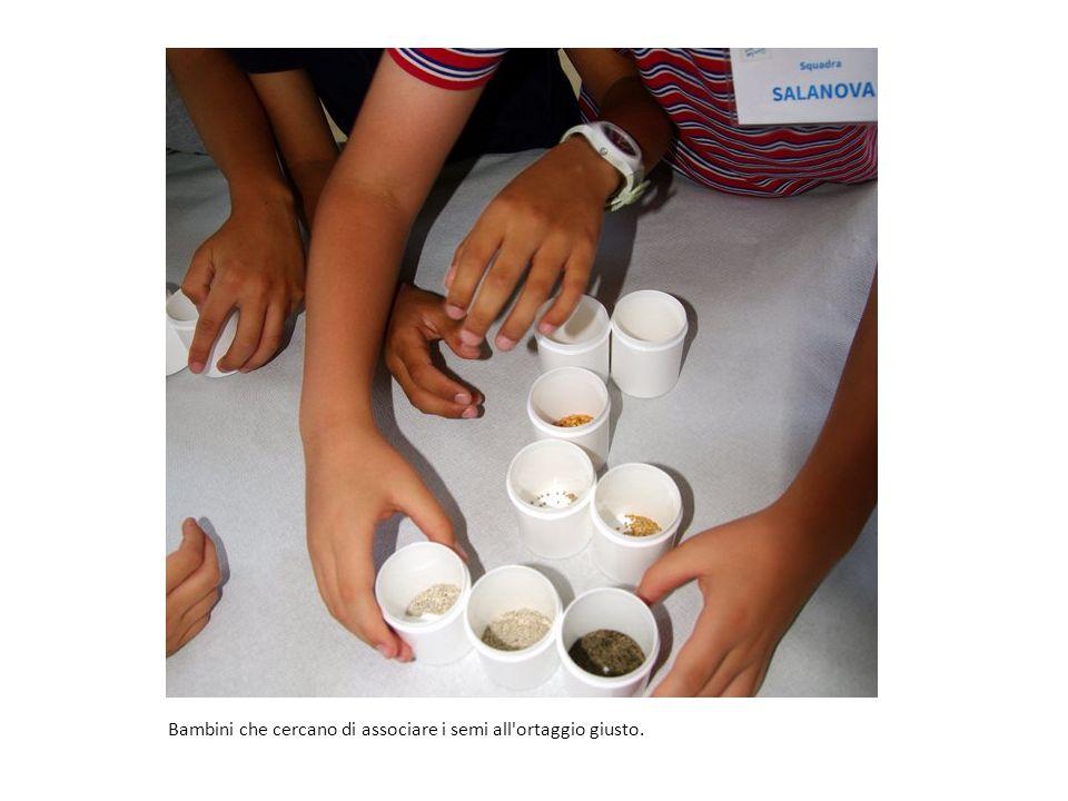 Bambini che cercano di associare i semi all ortaggio giusto.