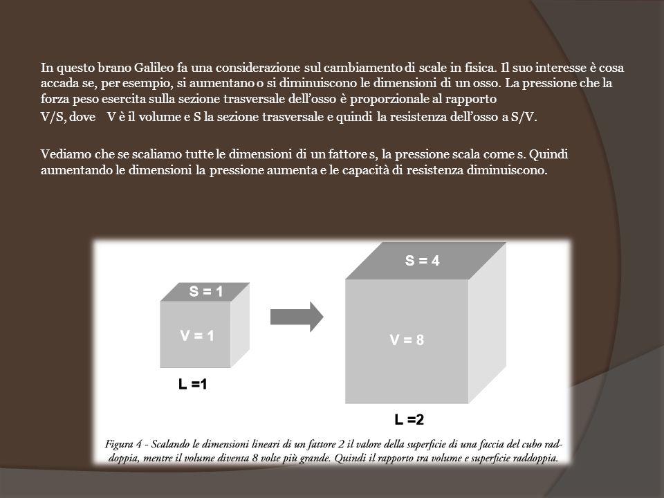 In questo brano Galileo fa una considerazione sul cambiamento di scale in fisica. Il suo interesse è cosa accada se, per esempio, si aumentano o si di