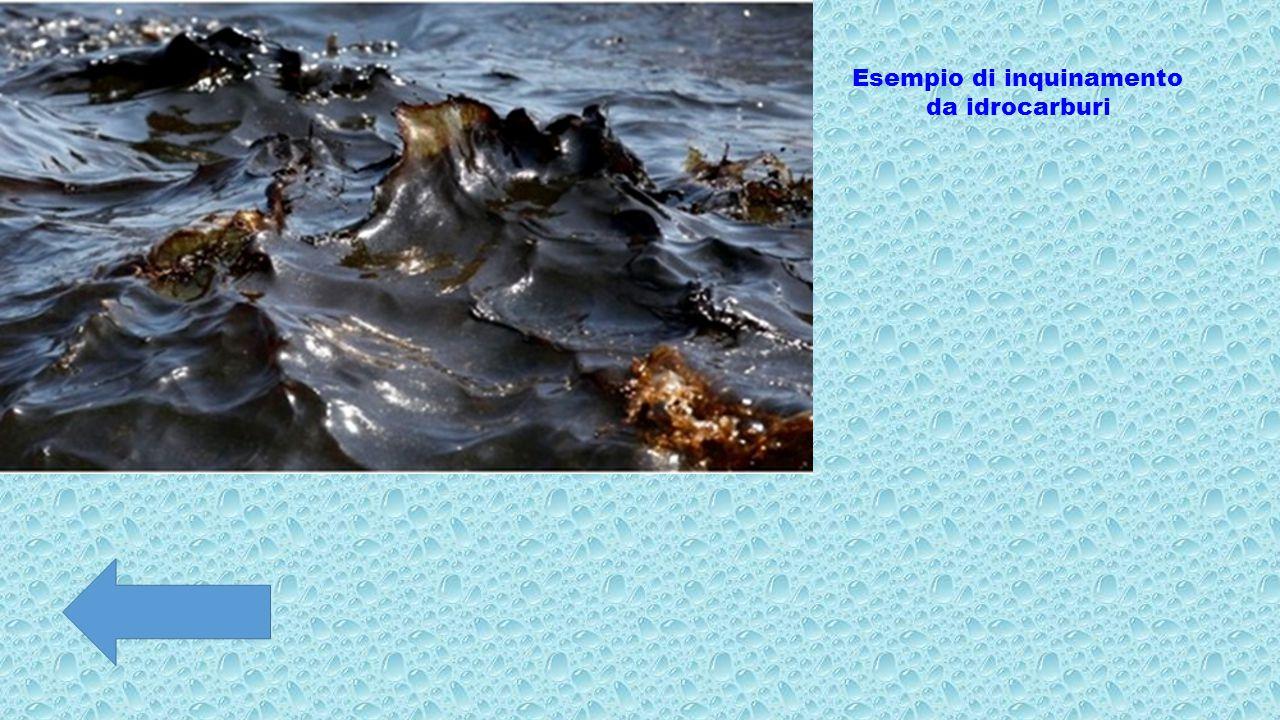 Esempio di inquinamento da idrocarburi