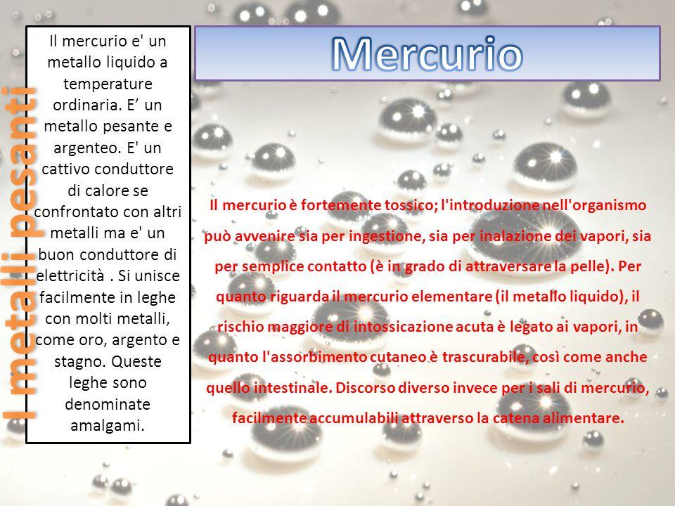 Il mercurio e' un metallo liquido a temperature ordinaria. E' un metallo pesante e argenteo. E' un cattivo conduttore di calore se confrontato con alt