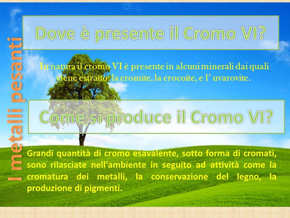 In natura il cromo VI è presente in alcuni minerali dai quali viene estratto: la cromite, la crocoite, e l' uvarovite. Grandi quantità di cromo esaval