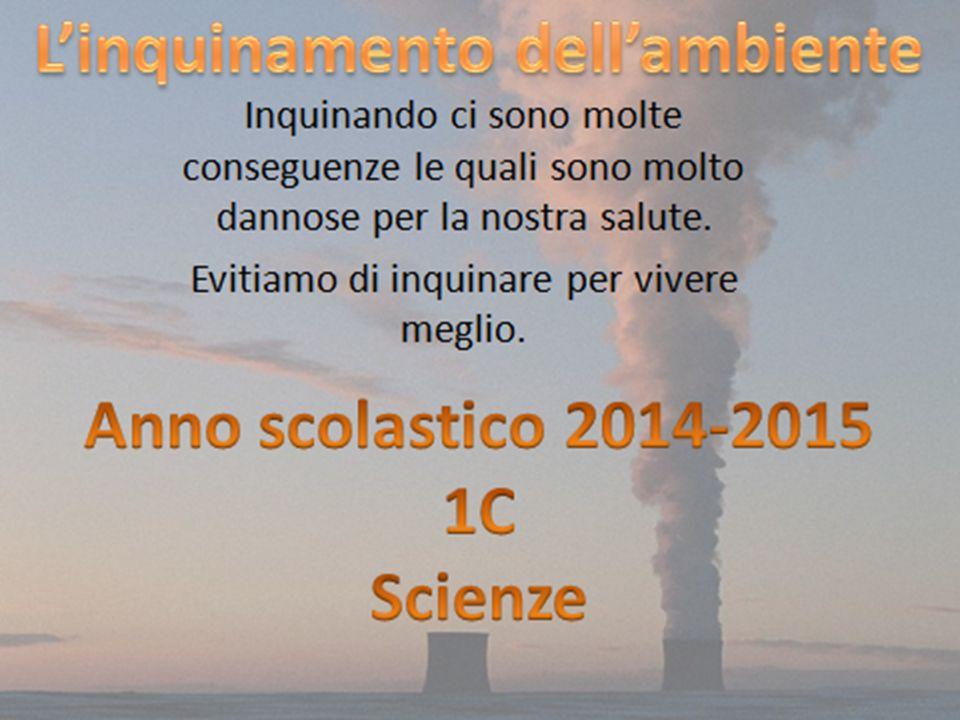 Ambiente acquatico L'ambiente acquatico può ricevere le PCDD/F attraverso: la deposizione atmosferica; l immissione di reflui industriali; il dilavamento di suoli contaminati