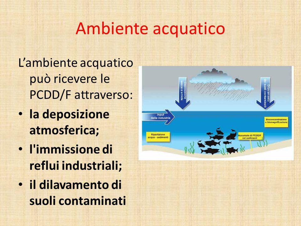 Ambiente acquatico L'ambiente acquatico può ricevere le PCDD/F attraverso: la deposizione atmosferica; l'immissione di reflui industriali; il dilavame