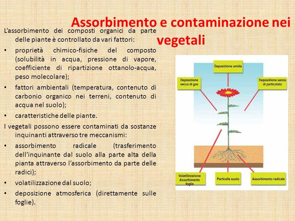 Assorbimento e contaminazione nei vegetali L'assorbimento dei composti organici da parte delle piante è controllato da vari fattori: proprietà chimico