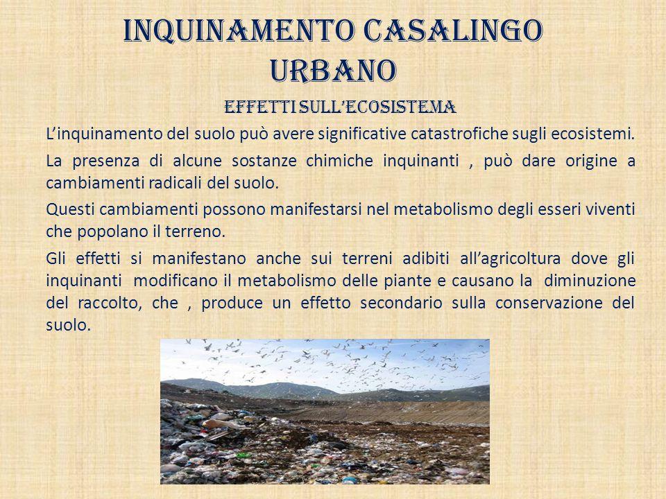 Inquinamento casalingo urbano Effetti sull'ecosistema L'inquinamento del suolo può avere significative catastrofiche sugli ecosistemi. La presenza di