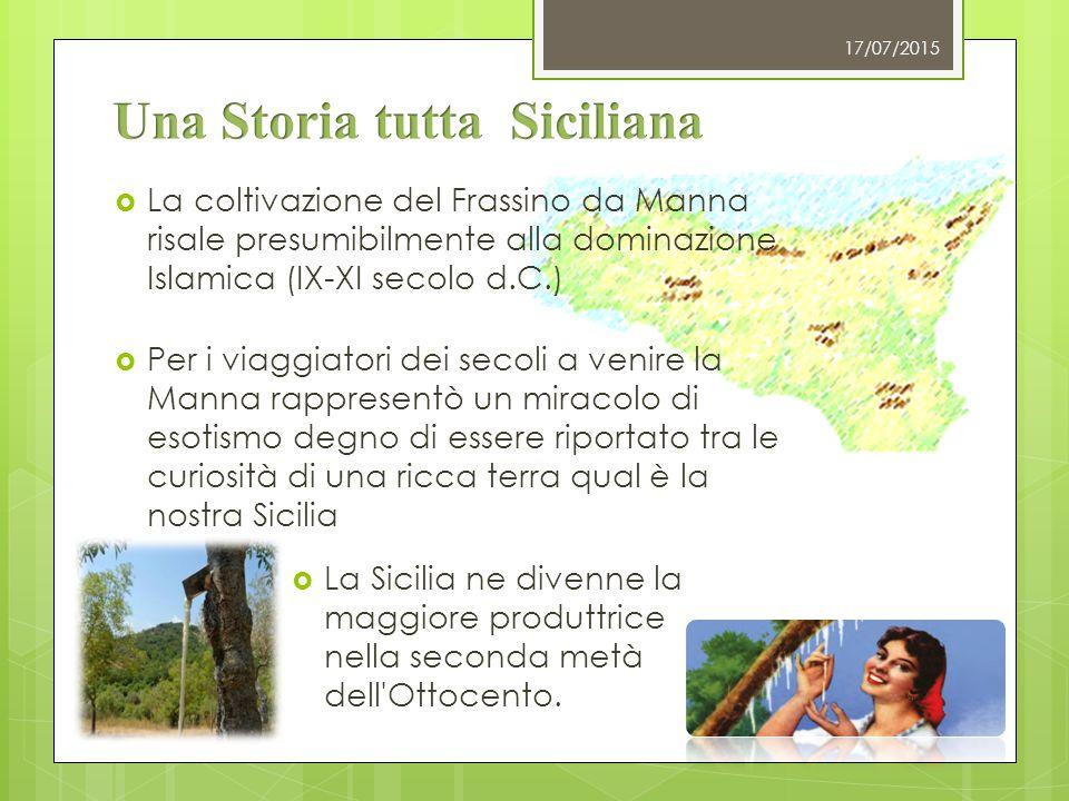  La Manna si produceva ad ovest di Palermo in tutti i paesi costieri fino a Trapani, nelle Madonie e nello stesso territorio Palermitano 17/07/2015  Oggi, l'area di coltivazione, purtroppo si è ristretta alle sole terre di Pollina e Castelbuono e viene ancora prodotta seguendo le antiche metodologie contadine