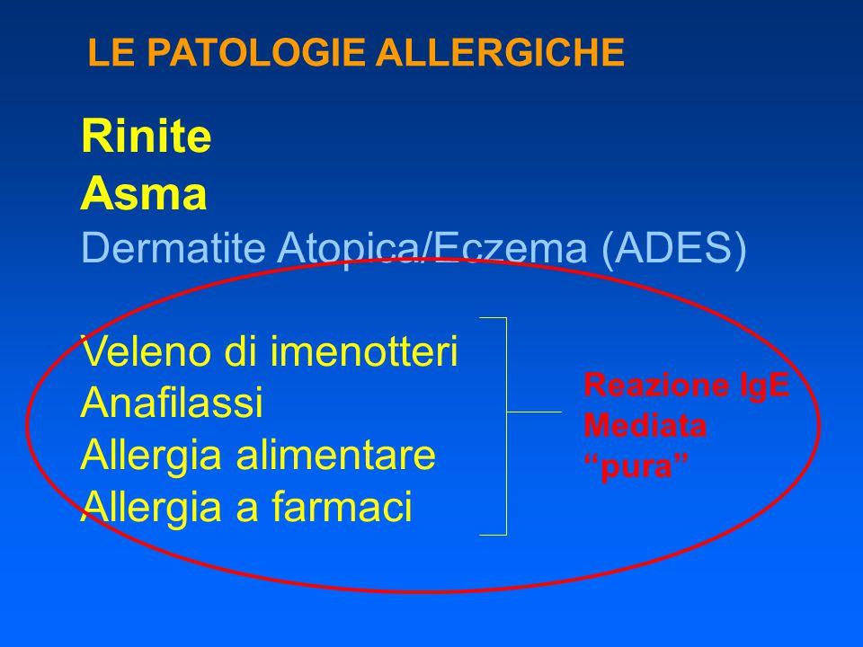 Rinite Asma Dermatite Atopica/Eczema (ADES) Veleno di imenotteri Anafilassi Allergia alimentare Allergia a farmaci LE PATOLOGIE ALLERGICHE Reazione Ig
