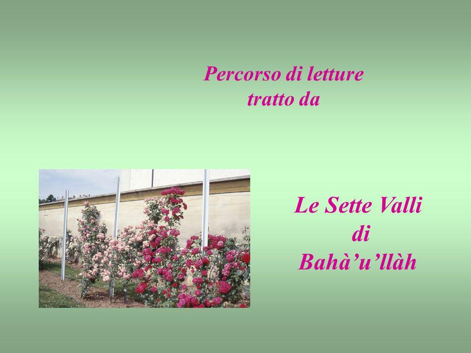 Percorso di letture tratto da Le Sette Valli di Bahà'u'llàh