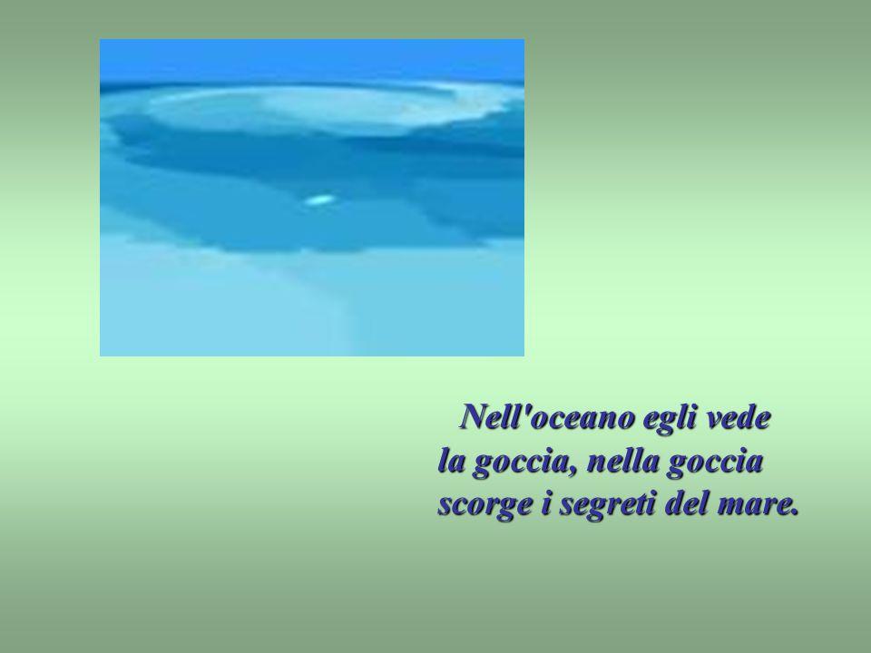 Nell oceano egli vede la goccia, nella goccia scorge i segreti del mare.