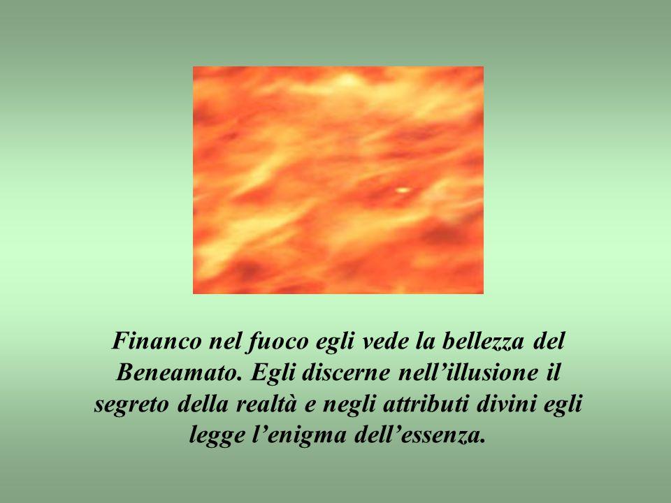 Financo nel fuoco egli vede la bellezza del Beneamato.