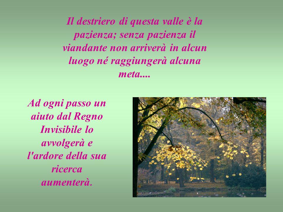 Il destriero di questa valle è la pazienza; senza pazienza il viandante non arriverà in alcun luogo né raggiungerà alcuna meta....