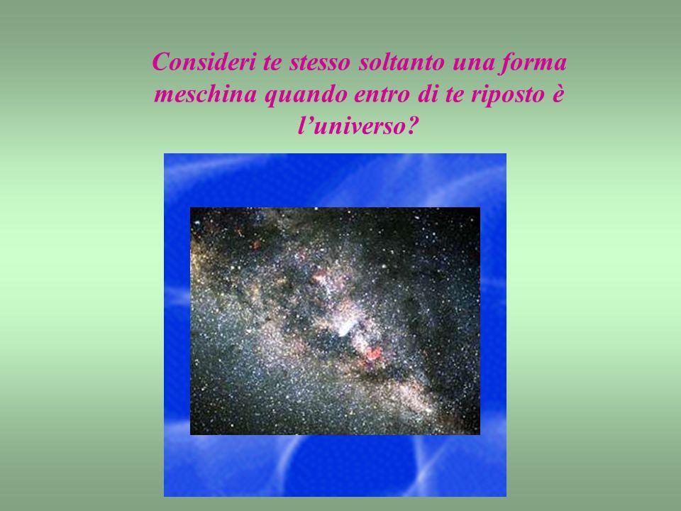 Consideri te stesso soltanto una forma meschina quando entro di te riposto è l'universo