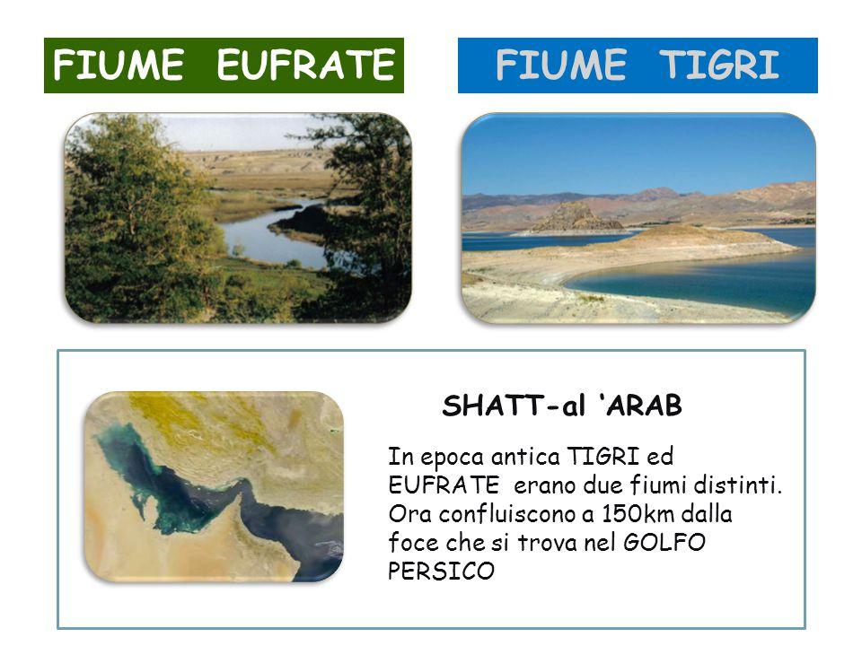FIUME EUFRATEFIUME TIGRI SHATT-al 'ARAB In epoca antica TIGRI ed EUFRATE erano due fiumi distinti. Ora confluiscono a 150km dalla foce che si trova ne