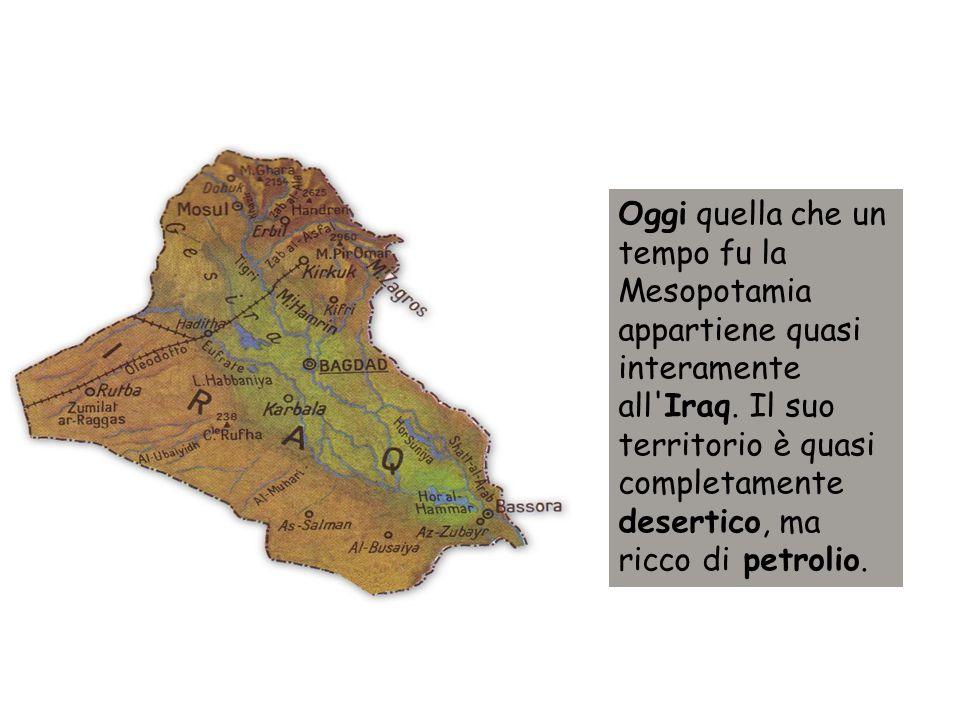 Questa è la pianura mesopotamica oggi.