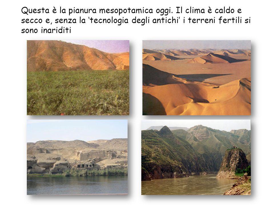 Questa è la pianura mesopotamica oggi. Il clima è caldo e secco e, senza la 'tecnologia degli antichi' i terreni fertili si sono inariditi