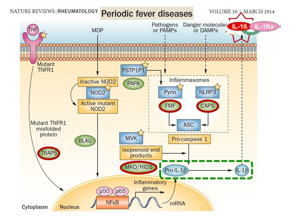 Stress psico/fisico Vaccini Infezioni Freddo Ciclo mestruale