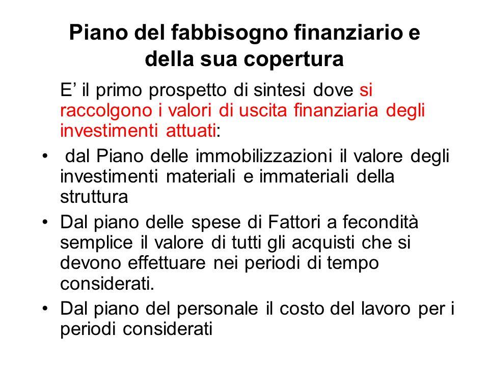 Piano del fabbisogno finanziario e della sua copertura E' il primo prospetto di sintesi dove si raccolgono i valori di uscita finanziaria degli invest