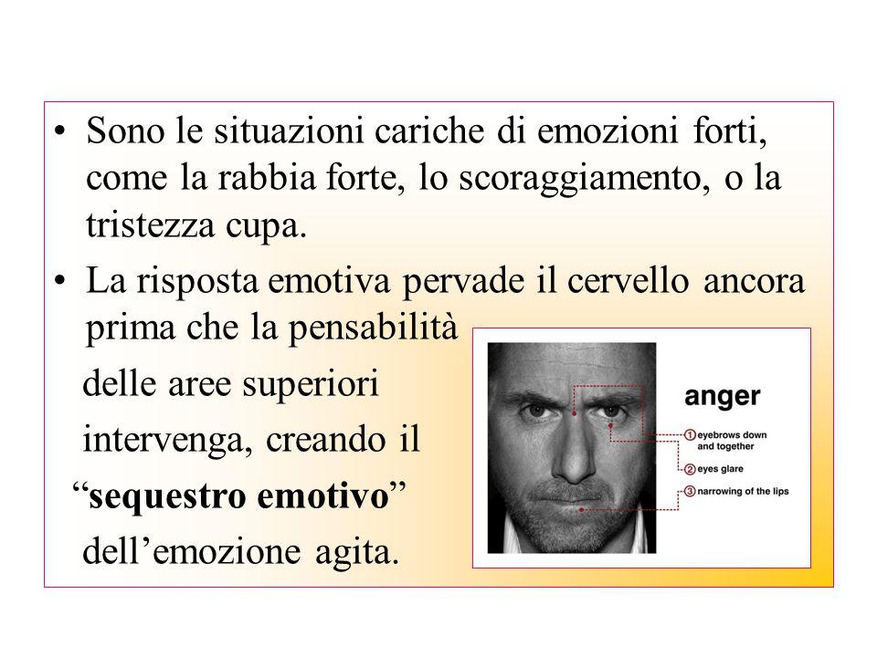 Sono le situazioni cariche di emozioni forti, come la rabbia forte, lo scoraggiamento, o la tristezza cupa. La risposta emotiva pervade il cervello an