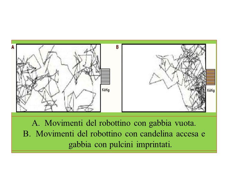 A.Movimenti del robottino con gabbia vuota. B.Movimenti del robottino con candelina accesa e gabbia con pulcini imprintati.