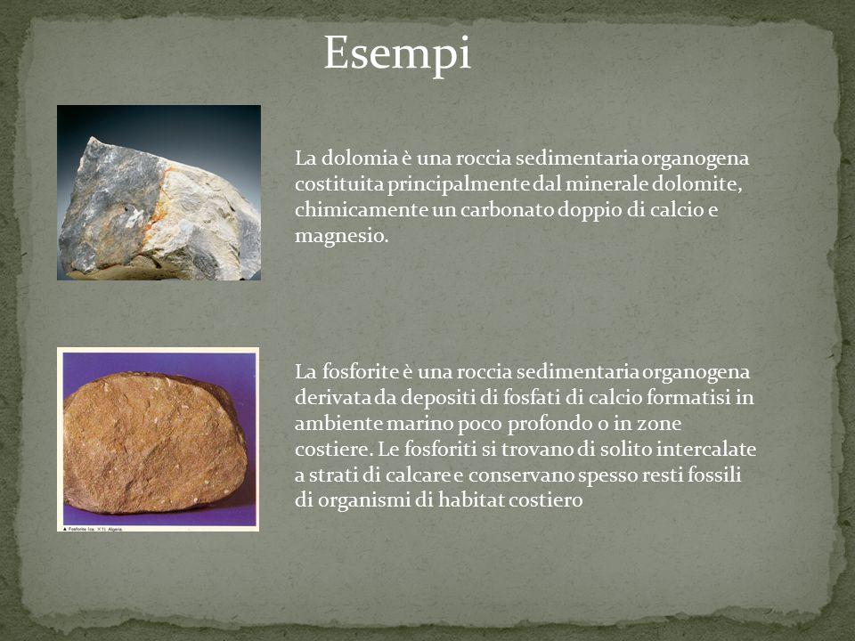 La dolomia è una roccia sedimentaria organogena costituita principalmente dal minerale dolomite, chimicamente un carbonato doppio di calcio e magnesio