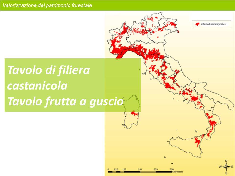 Valorizzazione del patrimonio forestale Tavolo di filiera castanicola Tavolo frutta a guscio