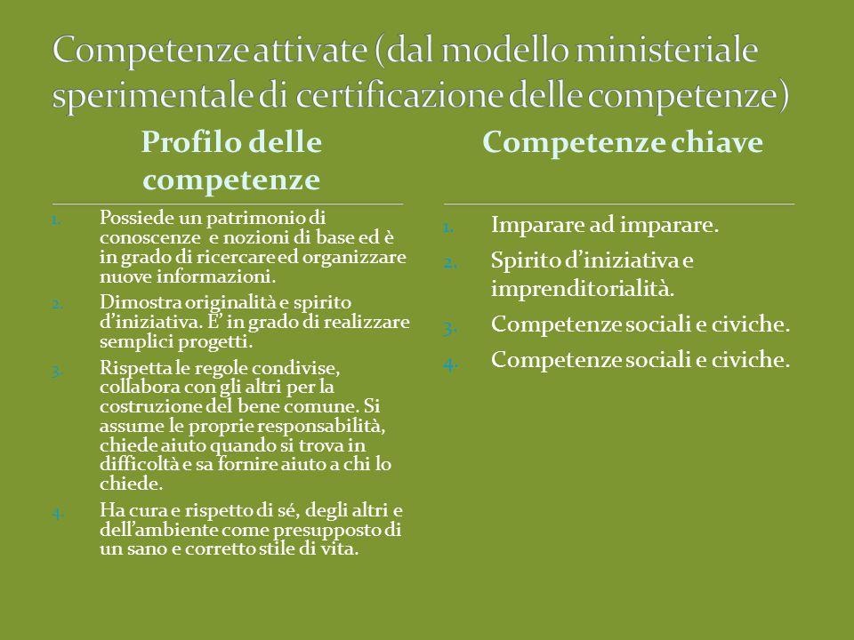Profilo delle competenze 1.