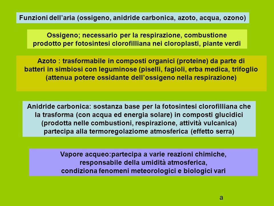 Funzioni dell'aria (ossigeno, anidride carbonica, azoto, acqua) Ossigeno; necessario per la respirazione, combustione prodotto per fotosintesi clorofilliana nei cloroplasti, piante verdi Azoto : trasformabile in composti organici (proteine) da parte di batteri in simbiosi con leguminose (piselli, fagioli, erba medica, trifoglio (attenua potere ossidante dell'ossigeno nella respirazione) a
