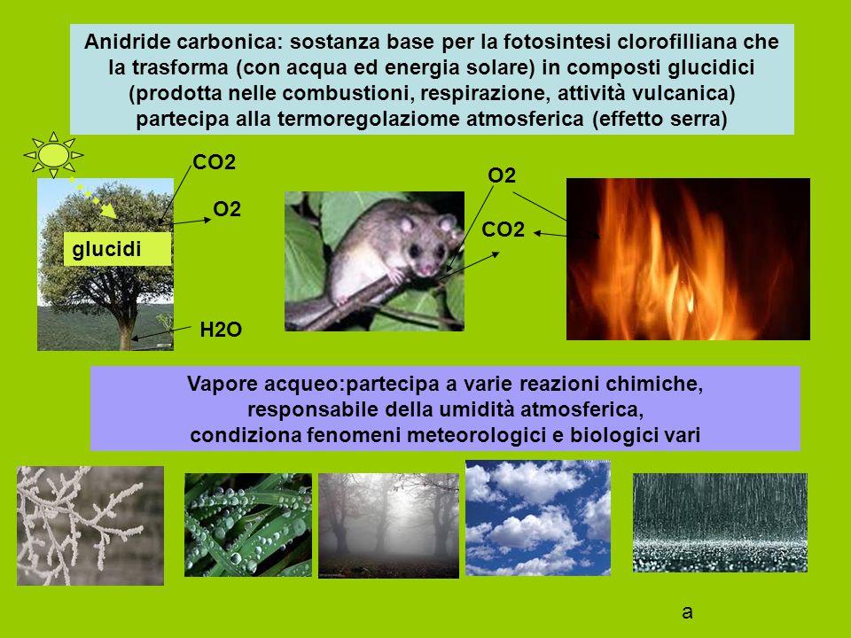 Nella stratosfera, ozonosfera, le radiazioni ultraviolette solari vengono assorbitie da gas ozono che si decompone in Ossigeno atomico e molecolare con reazione di equilibrio ozono > ossigeno atomico + ossigeno molecolare Ozono:nella troposfera l'ozono può formarsi durante i temporali La ozonosfera protegge gli esseri viventi dalla radiazione ultravioletta una riduzione della ozonosfera può produrre danni agli organismi Sostanze di origine antropica (cloro-fluoro-carburi) CFC derivanti da bombolette spray, frigoriferi, condizionatori d'aria..raggiungono la ozonosfera, vengono scissi dai raggi ultravioletti liberando cloro molecolare, che si trasforma in cloro atomico, il quale catalizza la trasformazione di ozono in ossigeno, riducendo la concentrazione di ozono e la azione protettiva Anche ossidi di azoto, bromuro di metile, ceneri vulcaniche, effetto serra … possono contribuire alla riduzione della ozonosfera e al buco nell'ozonosfera CFC O3O2 CFCCl2 Cl O3 O2 a