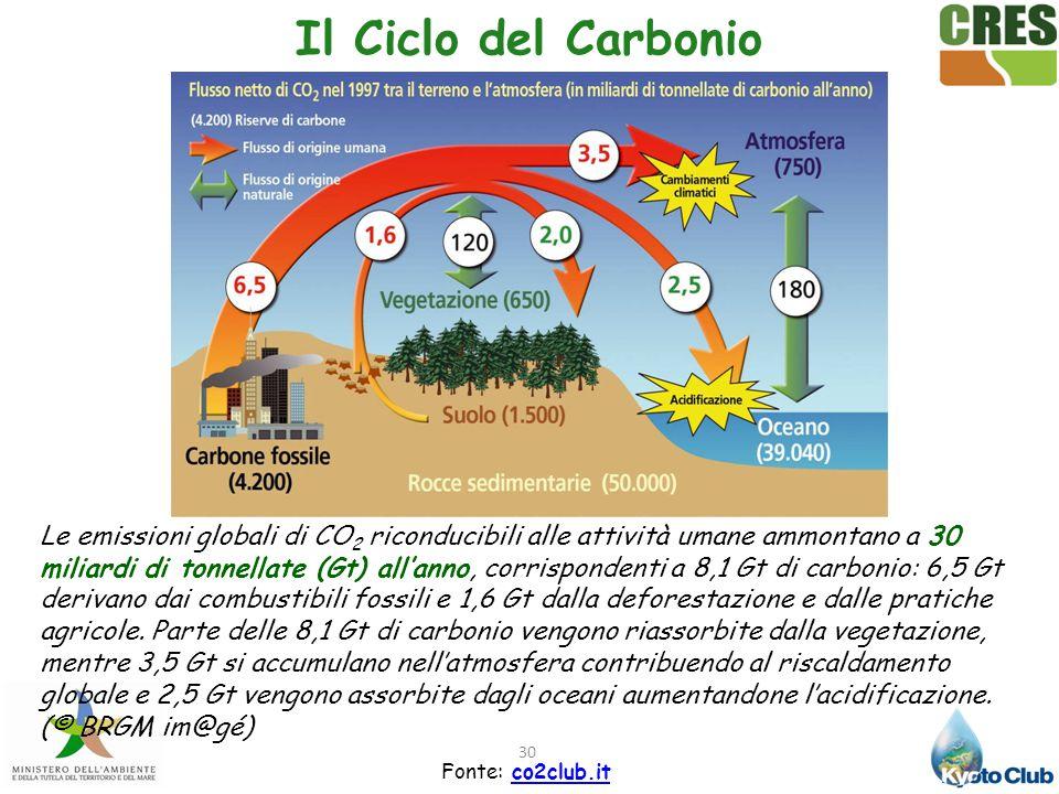 30 Il Ciclo del Carbonio Fonte: co2club.itco2club.it Le emissioni globali di CO 2 riconducibili alle attività umane ammontano a 30 miliardi di tonnell