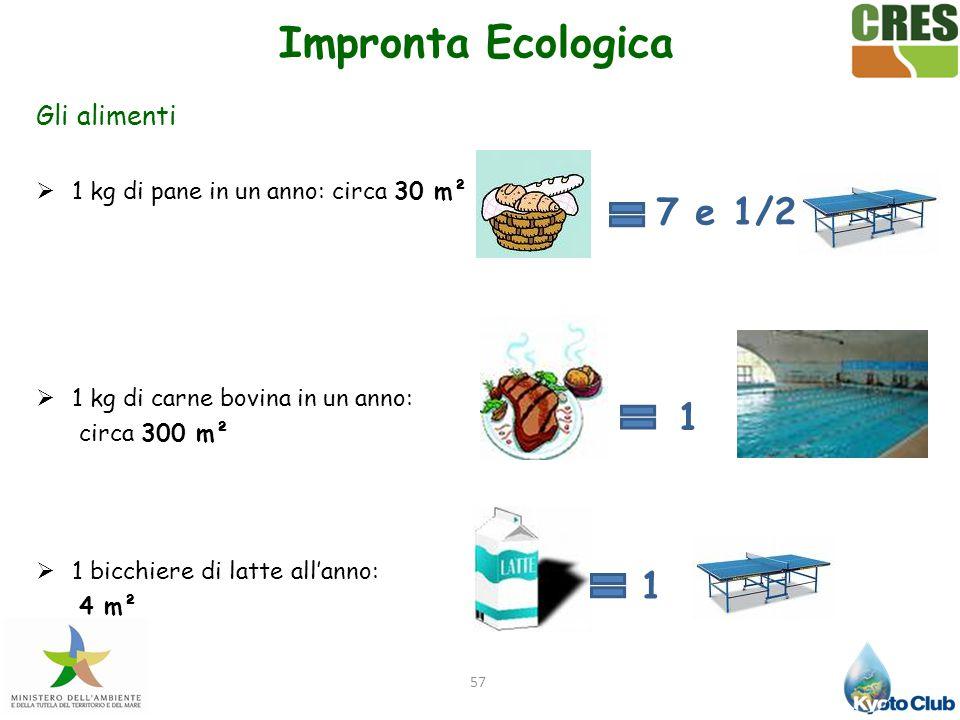 57 Gli alimenti  1 kg di pane in un anno: circa 30 m²  1 kg di carne bovina in un anno: circa 300 m²  1 bicchiere di latte all'anno: 4 m² 7 e 1/2 1