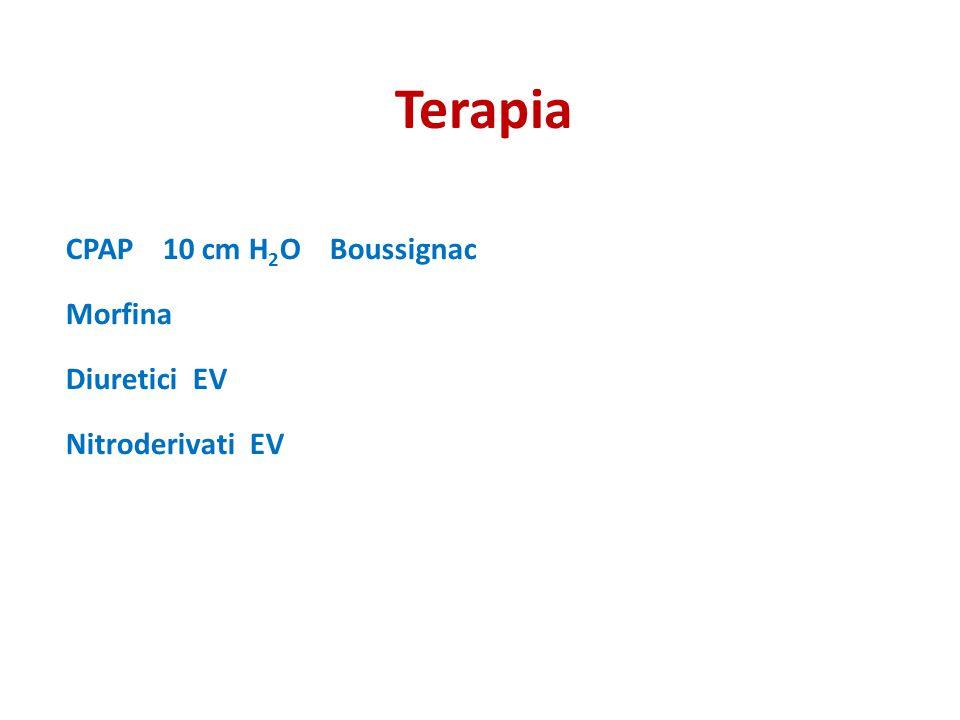Terapia CPAP 10 cm H 2 O Boussignac Morfina Diuretici EV Nitroderivati EV