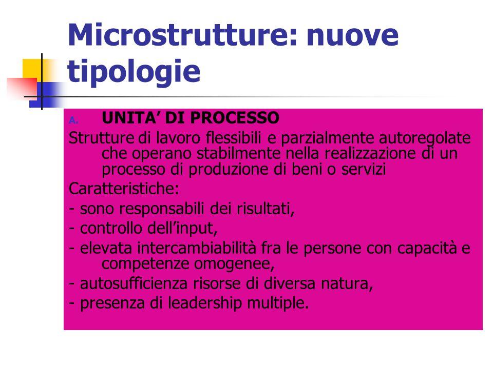 Microstrutture: nuove tipologie A. UNITA' DI PROCESSO Strutture di lavoro flessibili e parzialmente autoregolate che operano stabilmente nella realizz