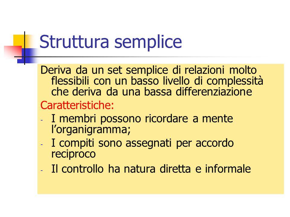 Struttura semplice Deriva da un set semplice di relazioni molto flessibili con un basso livello di complessità che deriva da una bassa differenziazion
