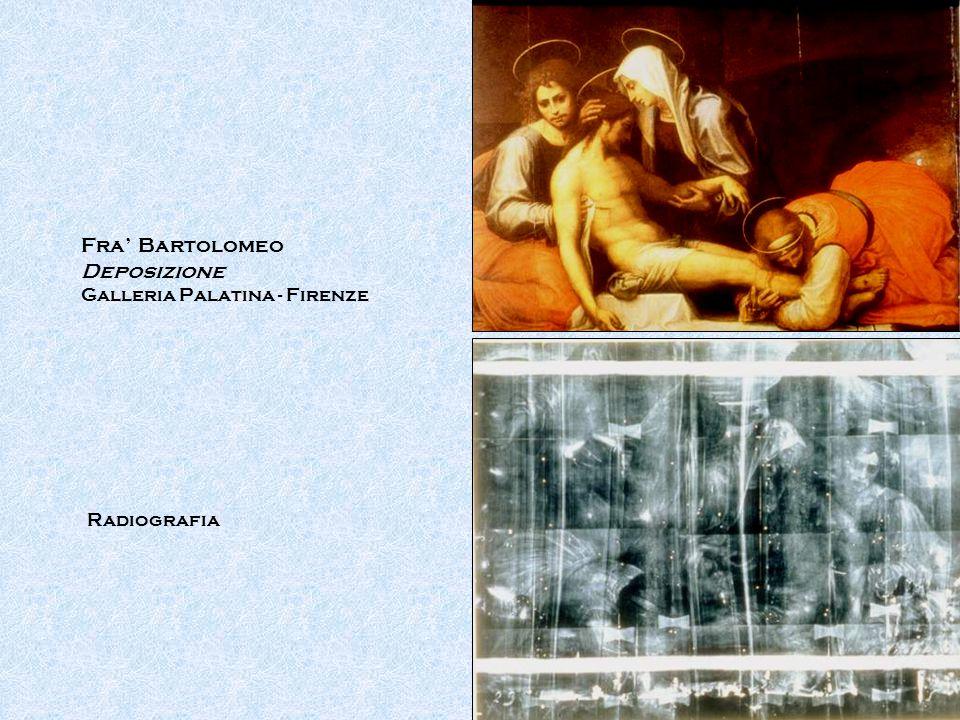 Fra' Bartolomeo Deposizione Galleria Palatina - Firenze Radiografia