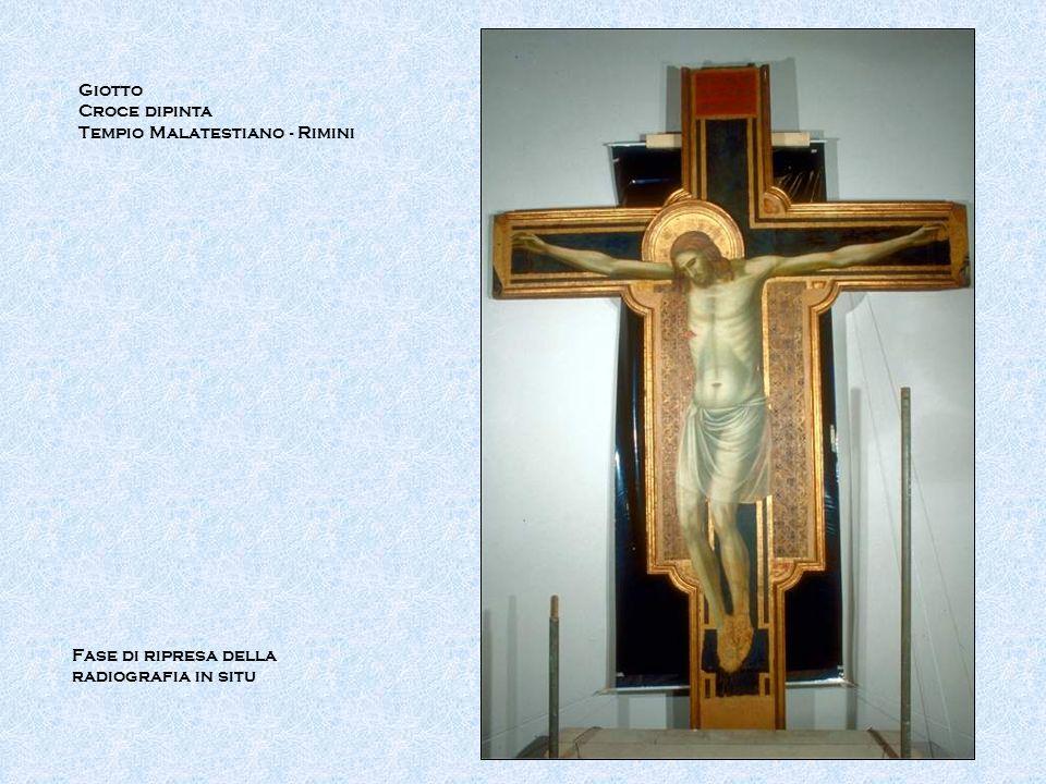 Giotto Croce dipinta Tempio Malatestiano - Rimini Fase di ripresa della radiografia in situ