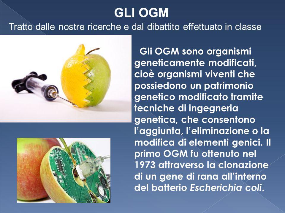 Gli OGM sono organismi geneticamente modificati, cioè organismi viventi che possiedono un patrimonio genetico modificato tramite tecniche di ingegneri