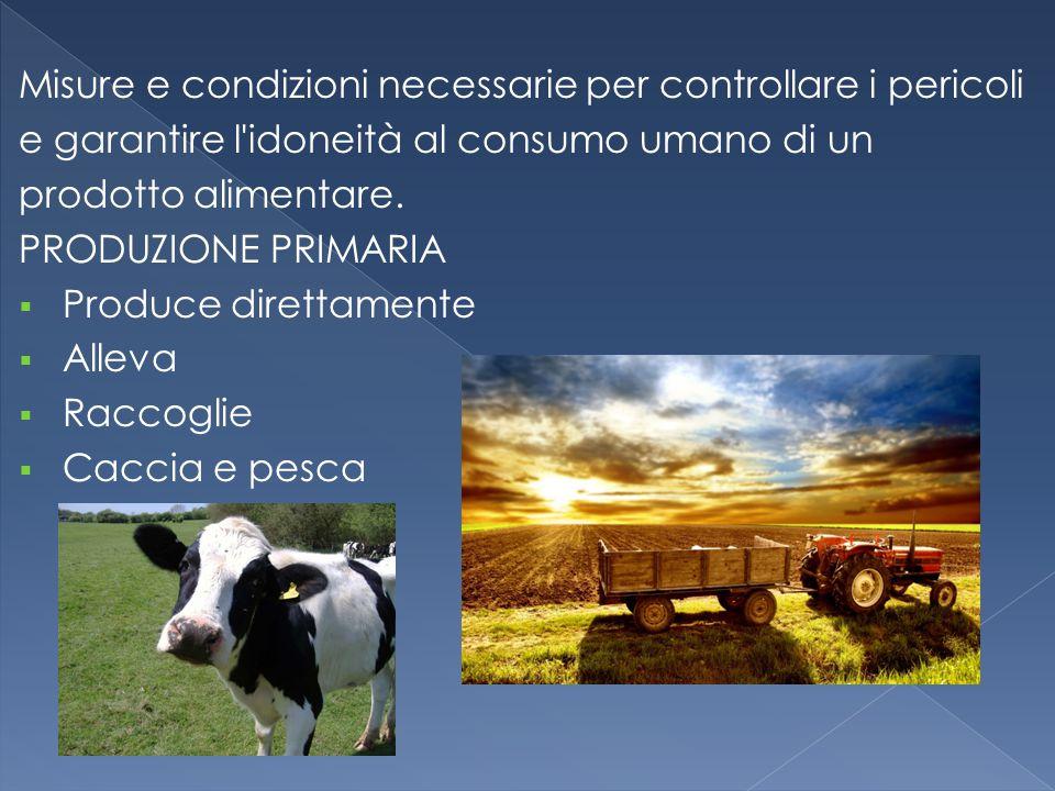 Misure e condizioni necessarie per controllare i pericoli e garantire l'idoneità al consumo umano di un prodotto alimentare. PRODUZIONE PRIMARIA  Pro