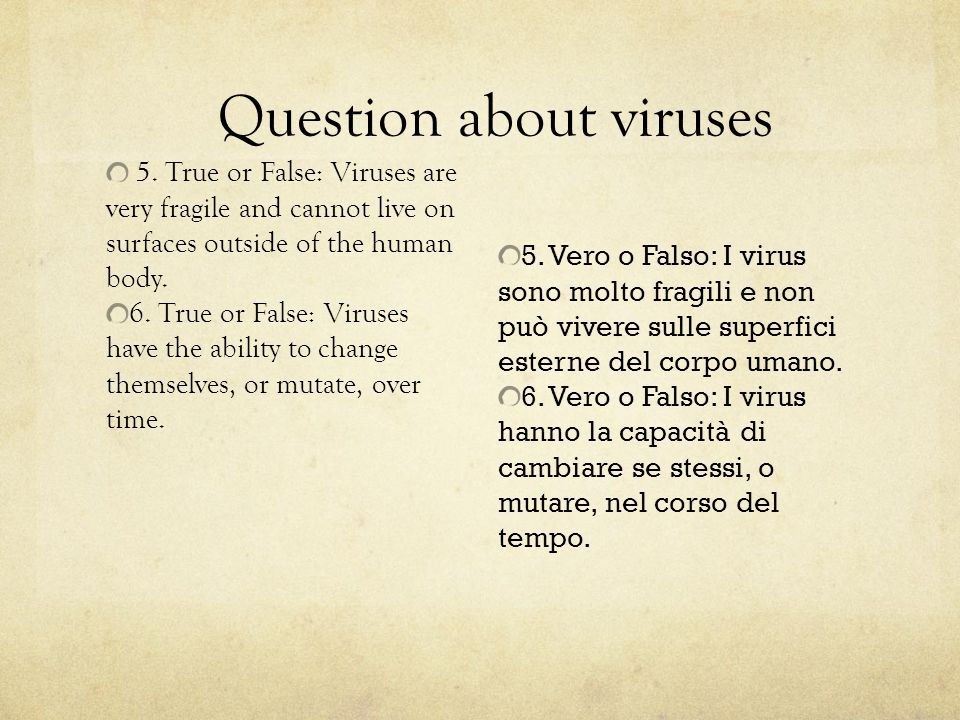 5.True or False: Viruses are very fragile and cannot live on surfaces outside of the human body.