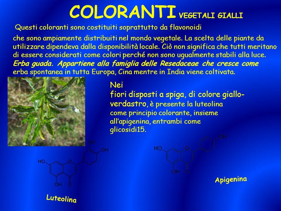 COLORANTI VEGETALI GIALLI Questi coloranti sono costituiti soprattutto da flavonoidi che sono ampiamente distribuiti nel mondo vegetale. La scelta del