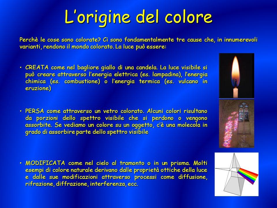 L'origine del colore Perchè le cose sono colorate? Ci sono fondamentalmente tre cause che, in innumerevoli varianti, rendono il mondo colorato. La luc