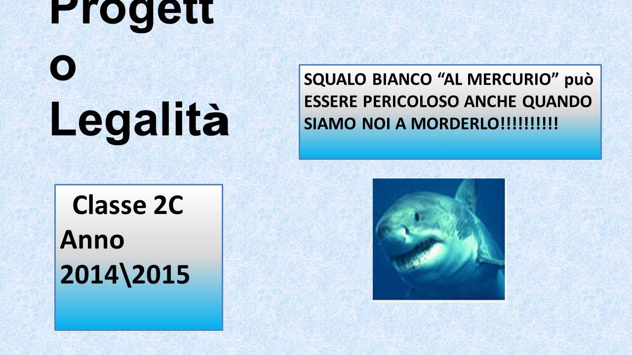 """Progett o Legalit à Classe 2C Anno 2014\2015 SQUALO BIANCO """"AL MERCURIO"""" può ESSERE PERICOLOSO ANCHE QUANDO SIAMO NOI A MORDERLO!!!!!!!!!!"""