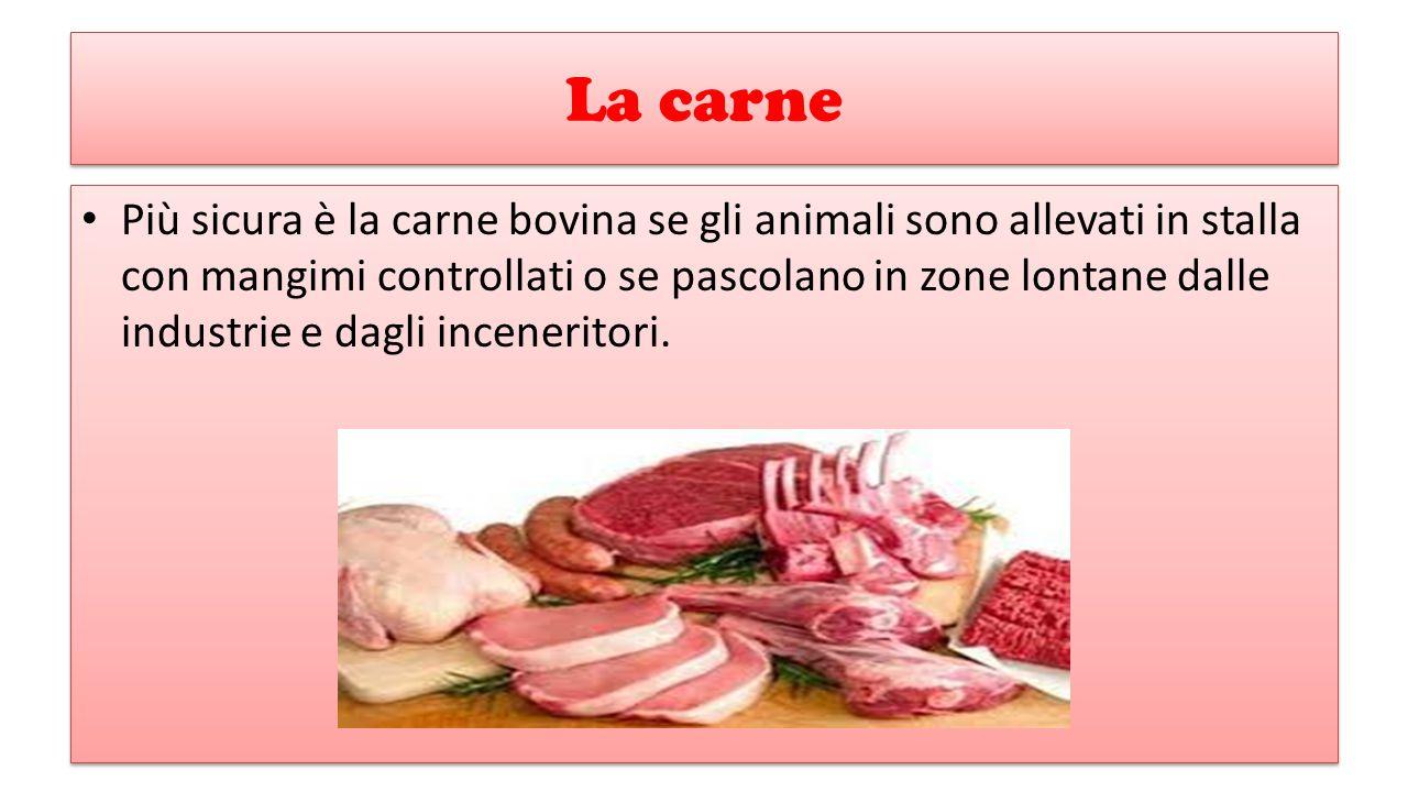 La carne Più sicura è la carne bovina se gli animali sono allevati in stalla con mangimi controllati o se pascolano in zone lontane dalle industrie e dagli inceneritori.
