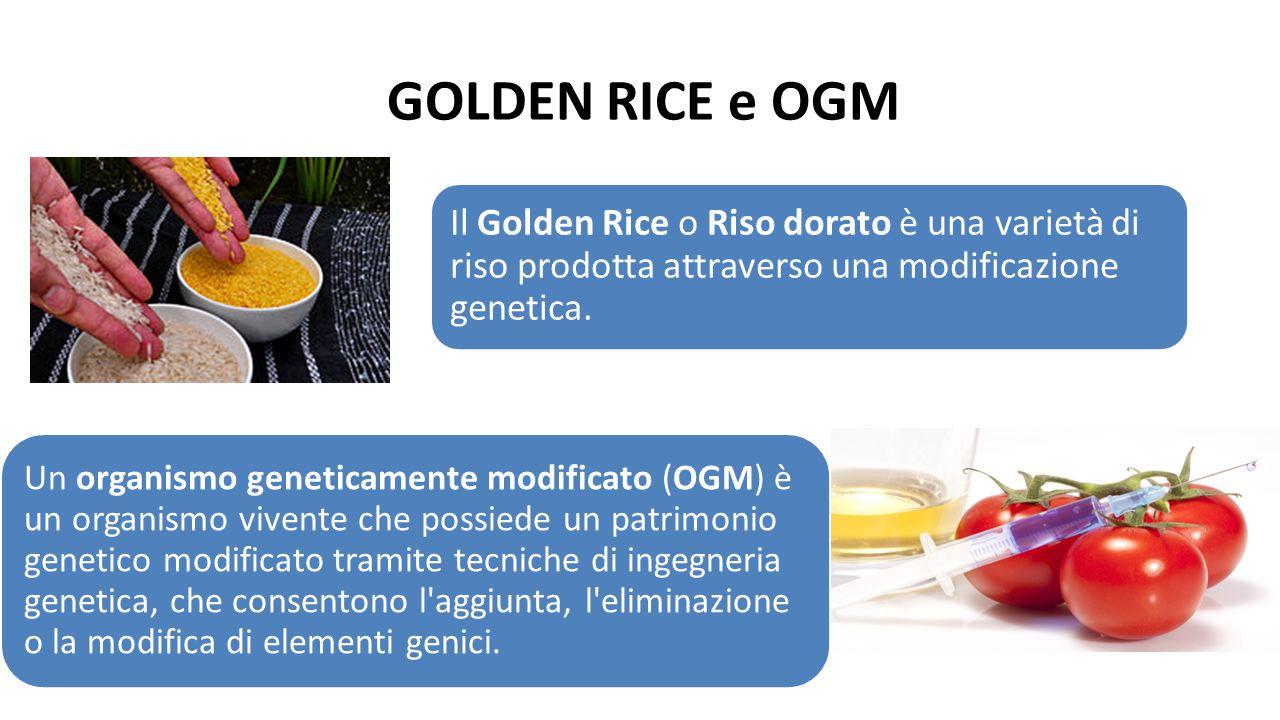 GOLDEN RICE e OGM