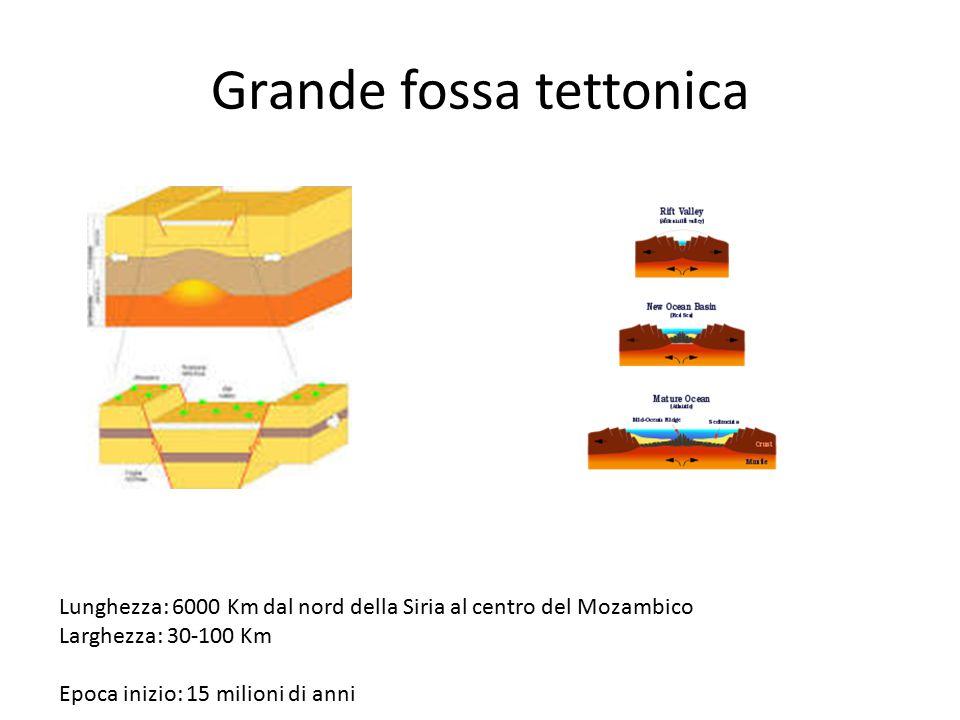 Grande fossa tettonica Lunghezza: 6000 Km dal nord della Siria al centro del Mozambico Larghezza: 30-100 Km Epoca inizio: 15 milioni di anni