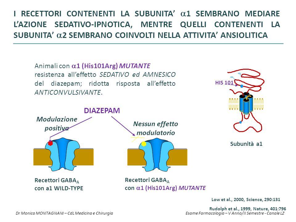 Recettori GABA A con a1 WILD-TYPE Recettori GABA A con  1 (His101Arg) MUTANTE DIAZEPAM Modulazione positiva Nessun effetto modulatorio HIS 101 Subuni